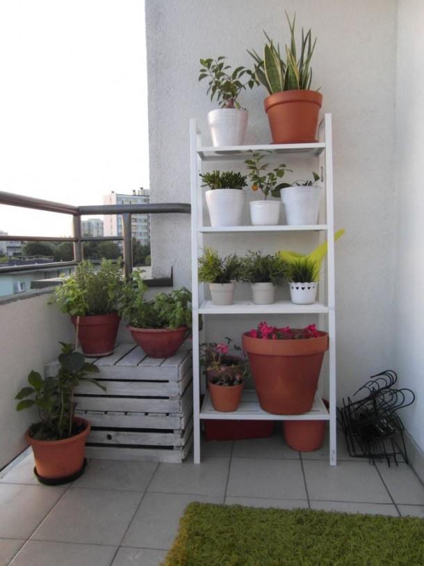 ogrodek na balkonie